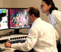 Scientists look at data (NIH photo)